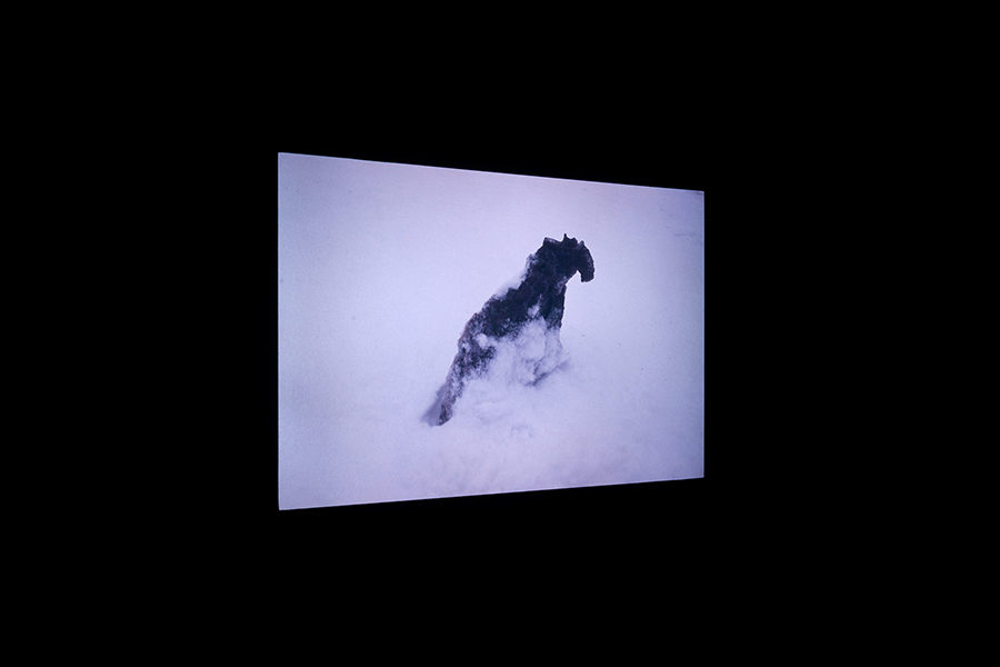 neige_carbonique01
